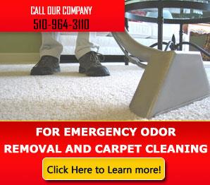 Flood Clean Up - Carpet Cleaning El Sobrante, CA